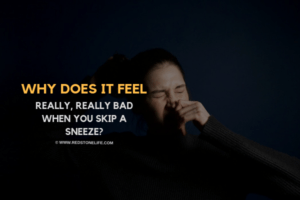 Why Does It Feel Really, Really Bad When You Skip A Sneeze - redstonelife.com