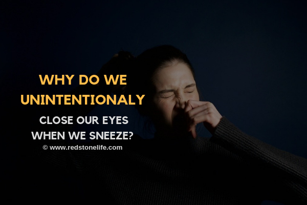 Why Do We Close Our Eyes When We Sneeze